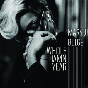 mjb_whole_damn_year_71